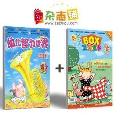 宝贝盒子+幼儿智力世界